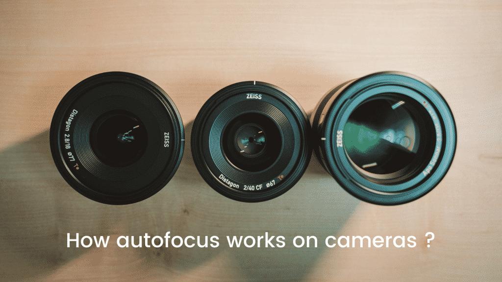 How autofocus works on cameras