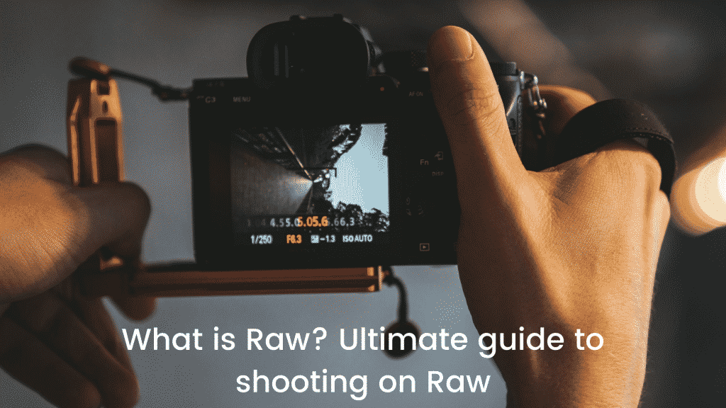 What is Raw Ultimate guide to shooting on Raw