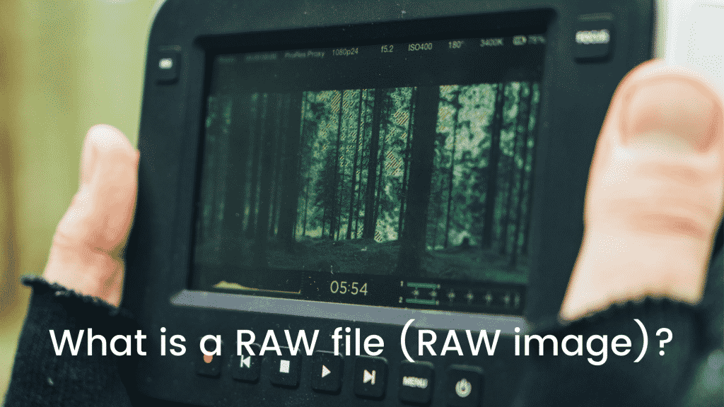What is a RAW file (RAW image)