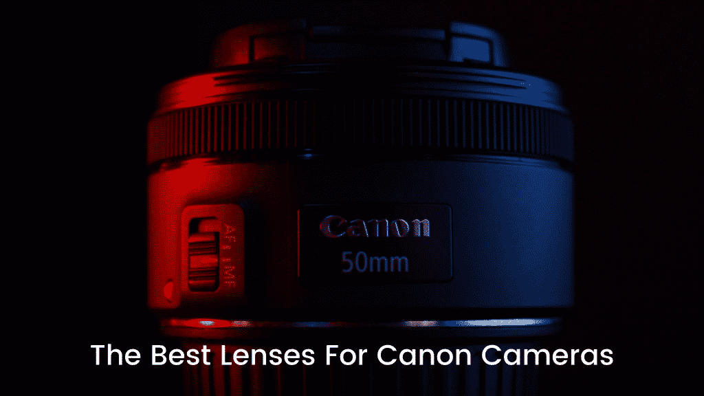 The Best Lenses For Canon Cameras